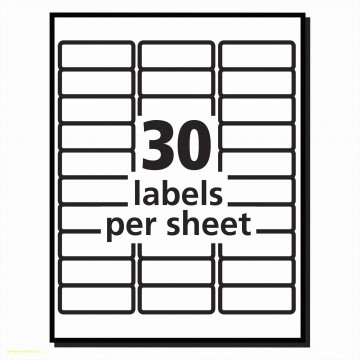 010 Magnificent Free Avery Addres Label Template For Mac High Definition  5160360