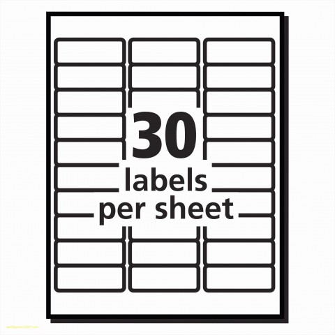 010 Magnificent Free Avery Addres Label Template For Mac High Definition  5160480
