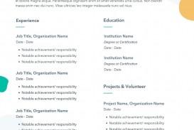 010 Magnificent Professional Cv Template Free Online Idea  Resume