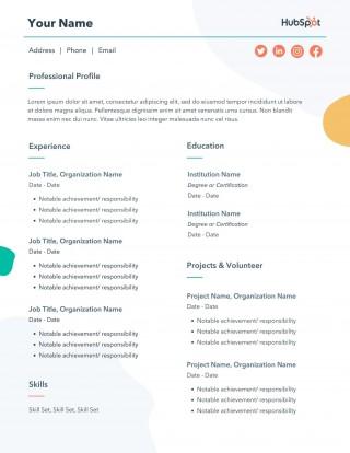 010 Magnificent Professional Cv Template Free Online Idea  Resume320