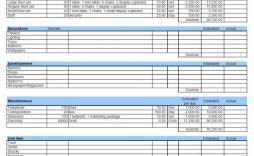 010 Shocking Line Item Budget Template Excel Design