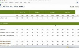 010 Shocking Microsoft Excel Weekly Cash Flow Template Highest Clarity  Forecast