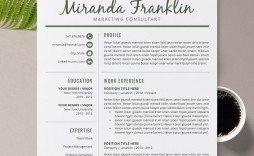 010 Simple Resume Template Microsoft Word 2007 High Definition  In Office M