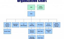010 Singular M Word Org Chart Template Concept  Organizational Free Download