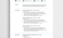 010 Stirring Professional Resume Template Free Download Word Concept  Creative
