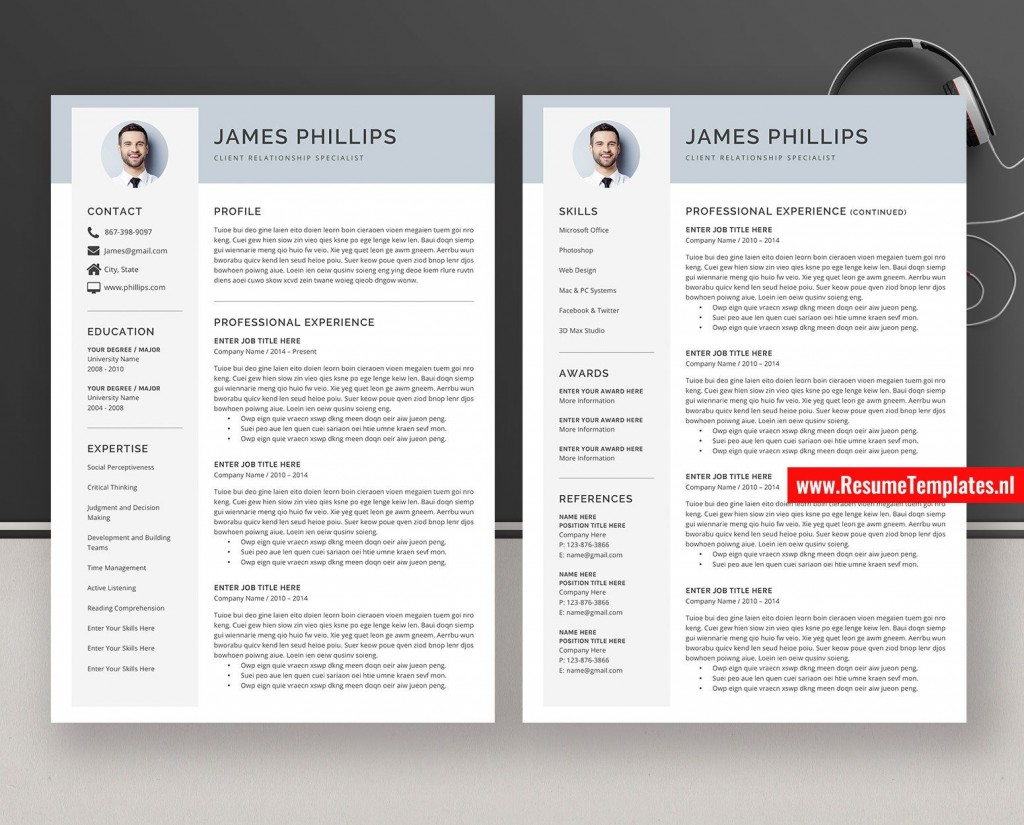 010 Surprising Simple Professional Cv Template Word Highest Quality Large