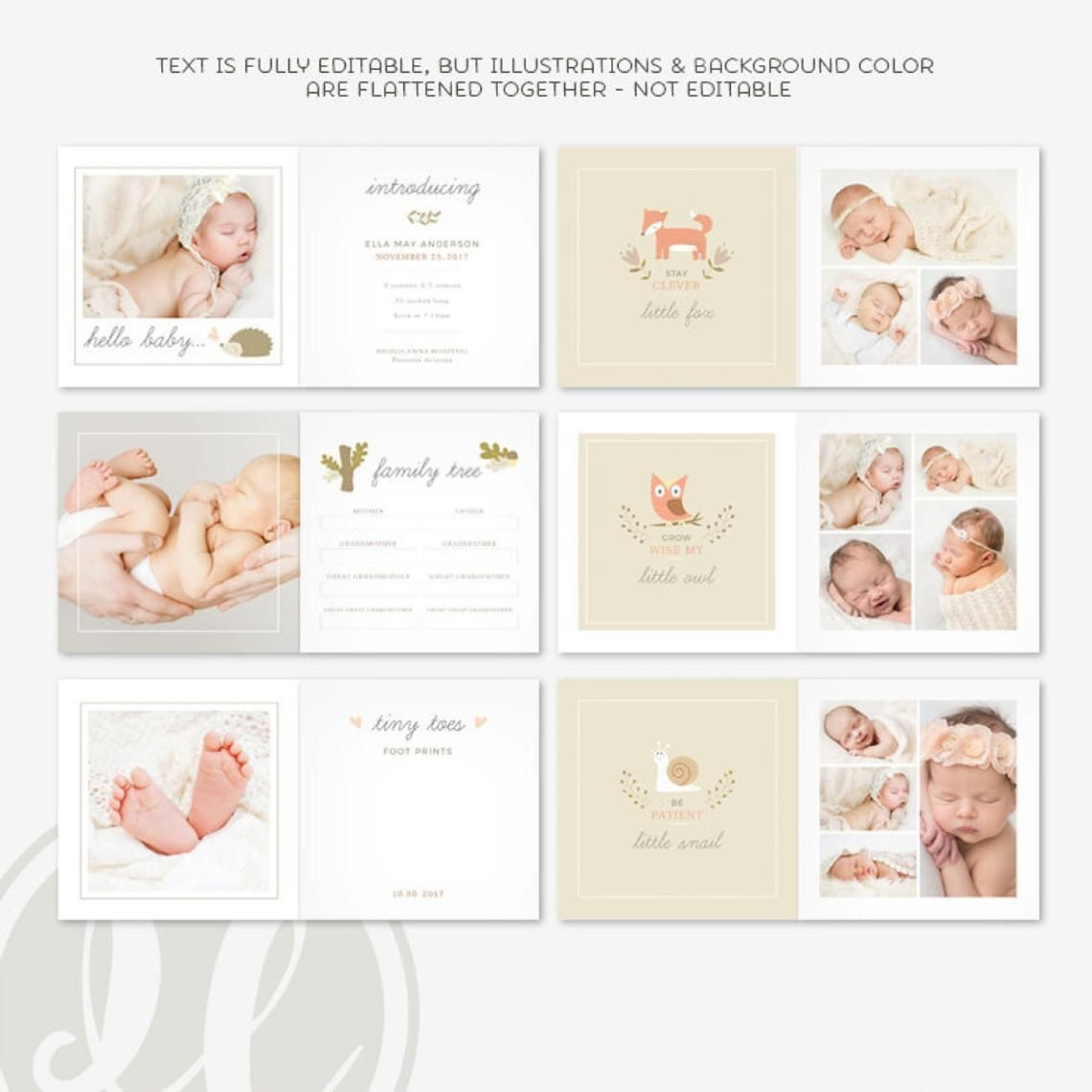 010 Unbelievable Family Tree For Baby Book Template High Definition  Printable1920