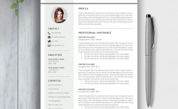 010 Unforgettable Word Resume Template 2020 Highest Clarity  Microsoft M