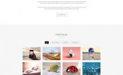 010 Unique Free Portfolio Website Template Inspiration  Templates For Web Developer Photography Html5