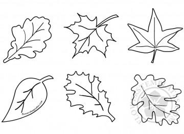 011 Formidable Blank Leaf Template With Line Idea  Printable360