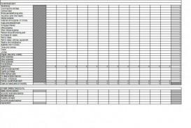 011 Impressive Cash Flow Template Excel Free Design  Statement Download Format In