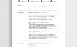 011 Marvelou Professional Resume Template Free Download Word Picture  Cv 2020 Format With Photo