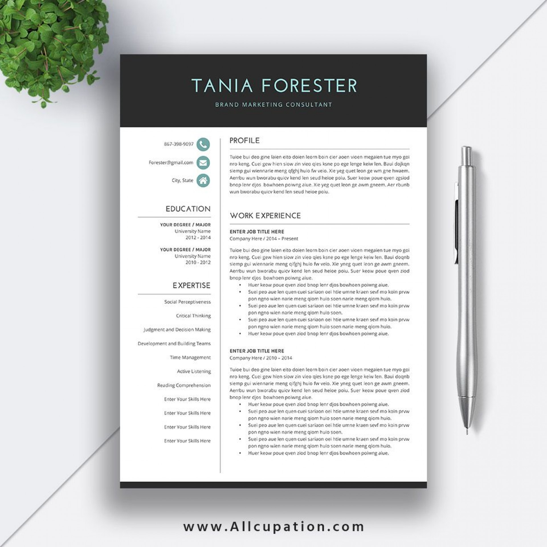 011 Simple Resume Template Word Download Design  For Fresher In Format Free 20201920