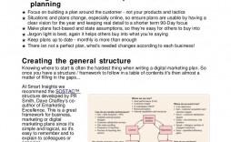 011 Stirring Digital Marketing Plan Example Doc Highest Clarity  Template Sample