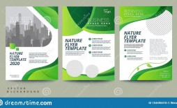 013 Singular Free Flyer Design Template High Resolution  Templates Online Download Psd
