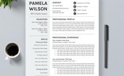 013 Stunning Curriculum Vitae Template Free Word Design  Sample Format Microsoft Cv Download