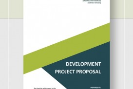 Development Project Proposal Template  Web Design & Powerpoint Sample