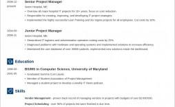 Free M Word Template Resume Idea  Ms Design Creative Download 2020
