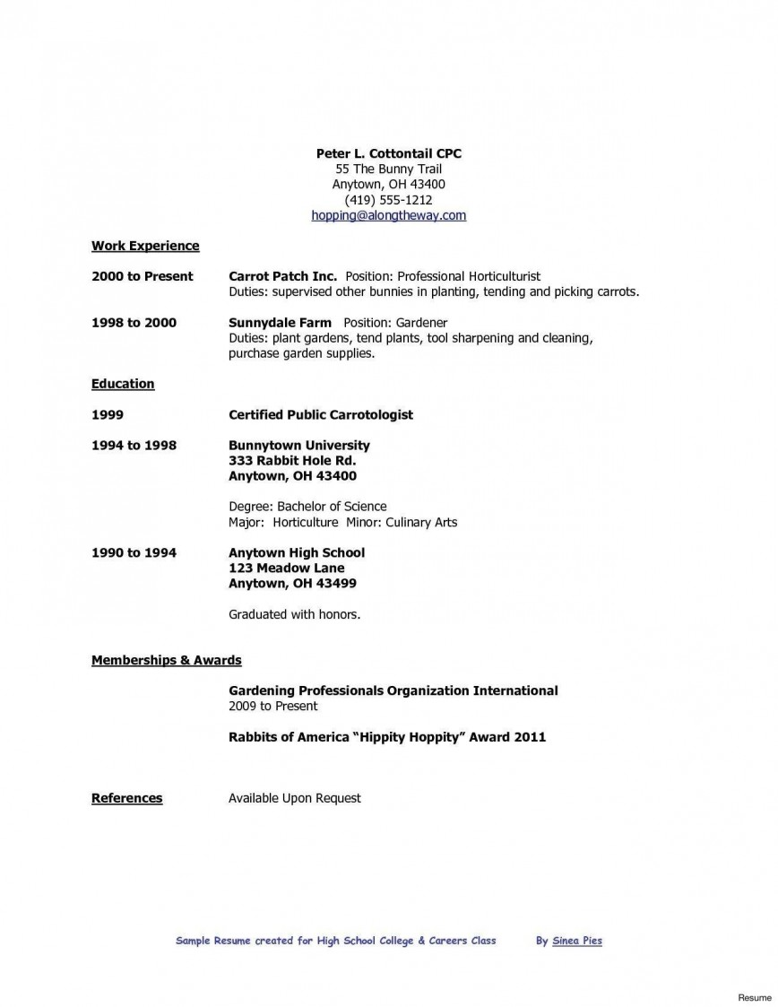 professional high school student resume with no work