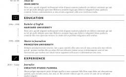 M Word Template Resume Sample  Ms Design Creative Free Download 2020