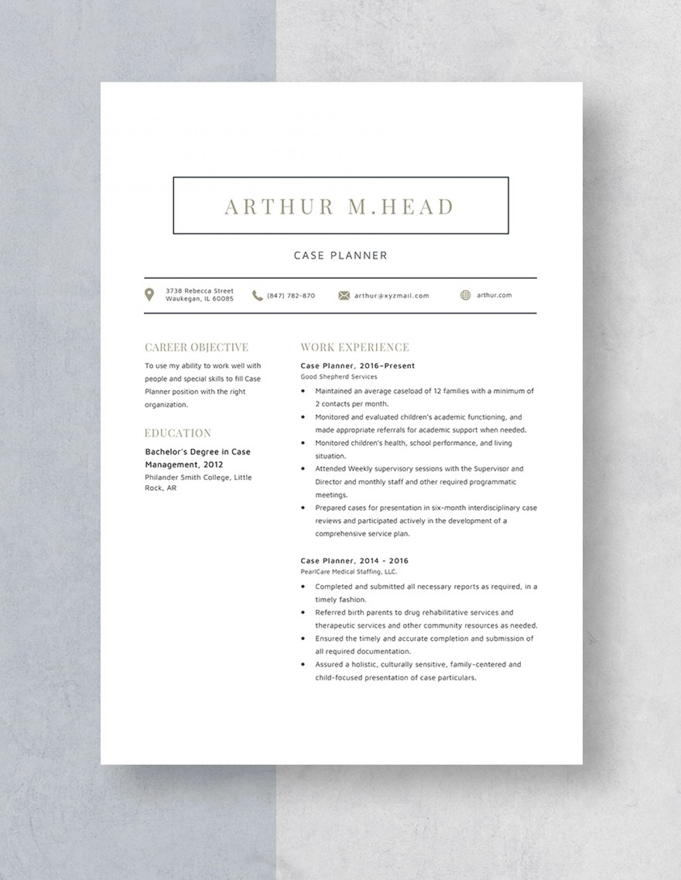 Template Case Planner Resume Idea 1400