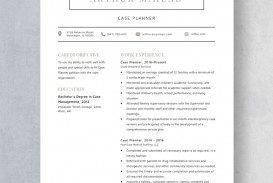 Template Case Planner Resume Idea