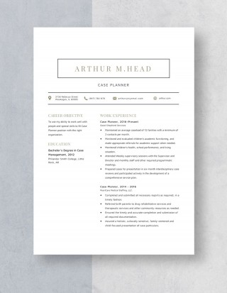 Template Case Planner Resume Idea 320