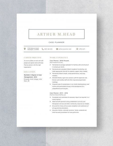 Template Case Planner Resume Idea 480