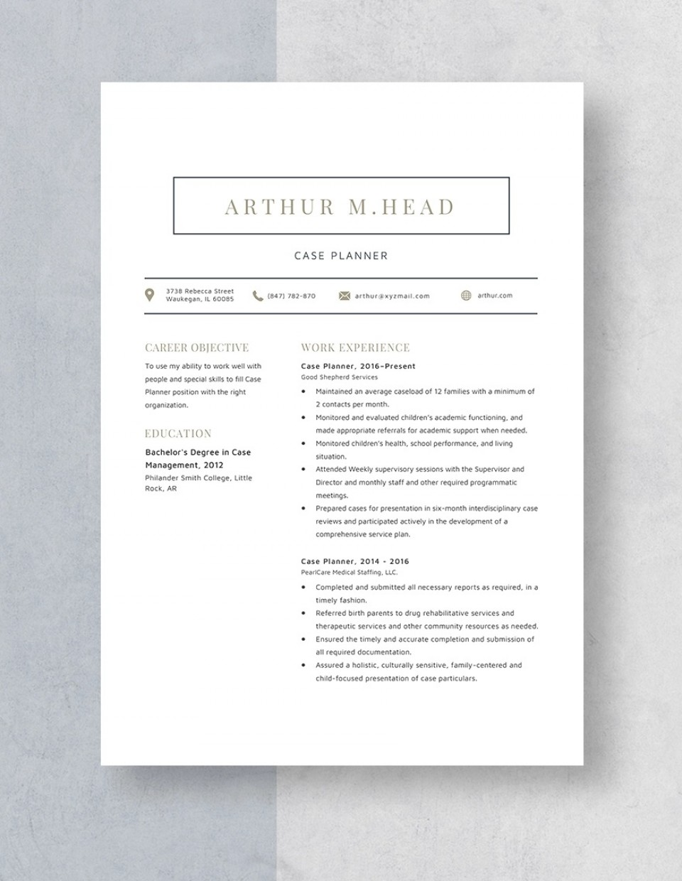 Template Case Planner Resume Idea 960