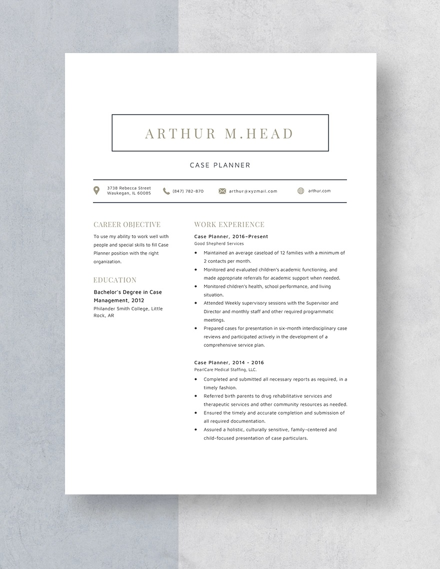 Template Case Planner Resume Idea Full