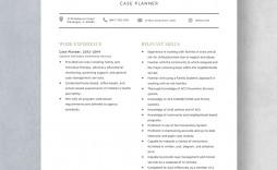 Template Case Planner Resume Sample